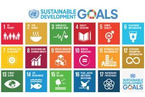 SDG-Poster